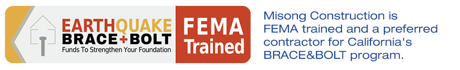 ms_fema_trained_page
